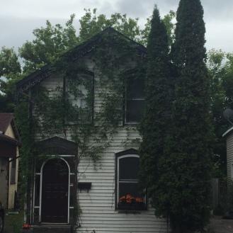 Quaint homes in Kingston